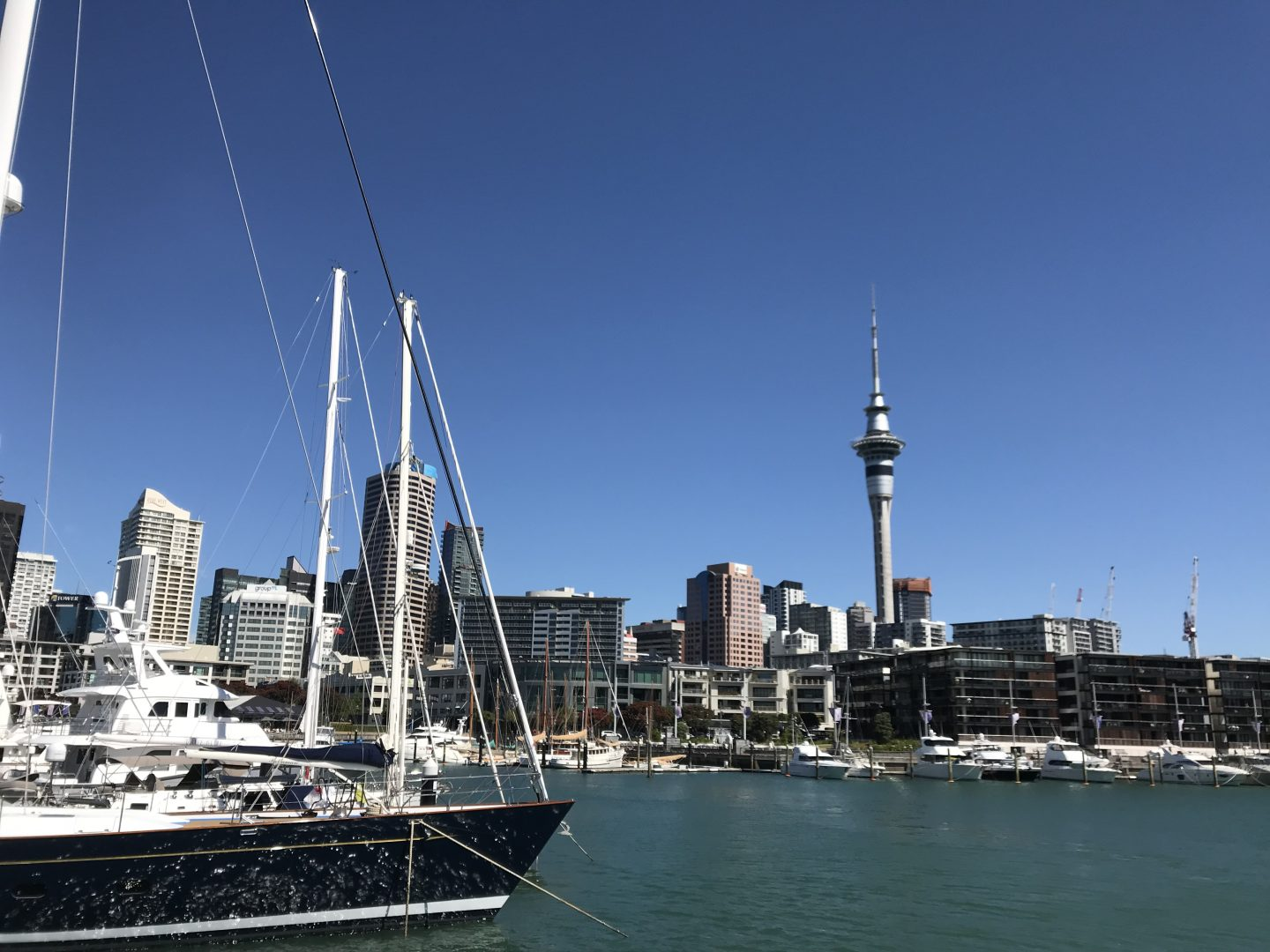 Ahoy Captain! A scenic cruise around Auckland Harbour