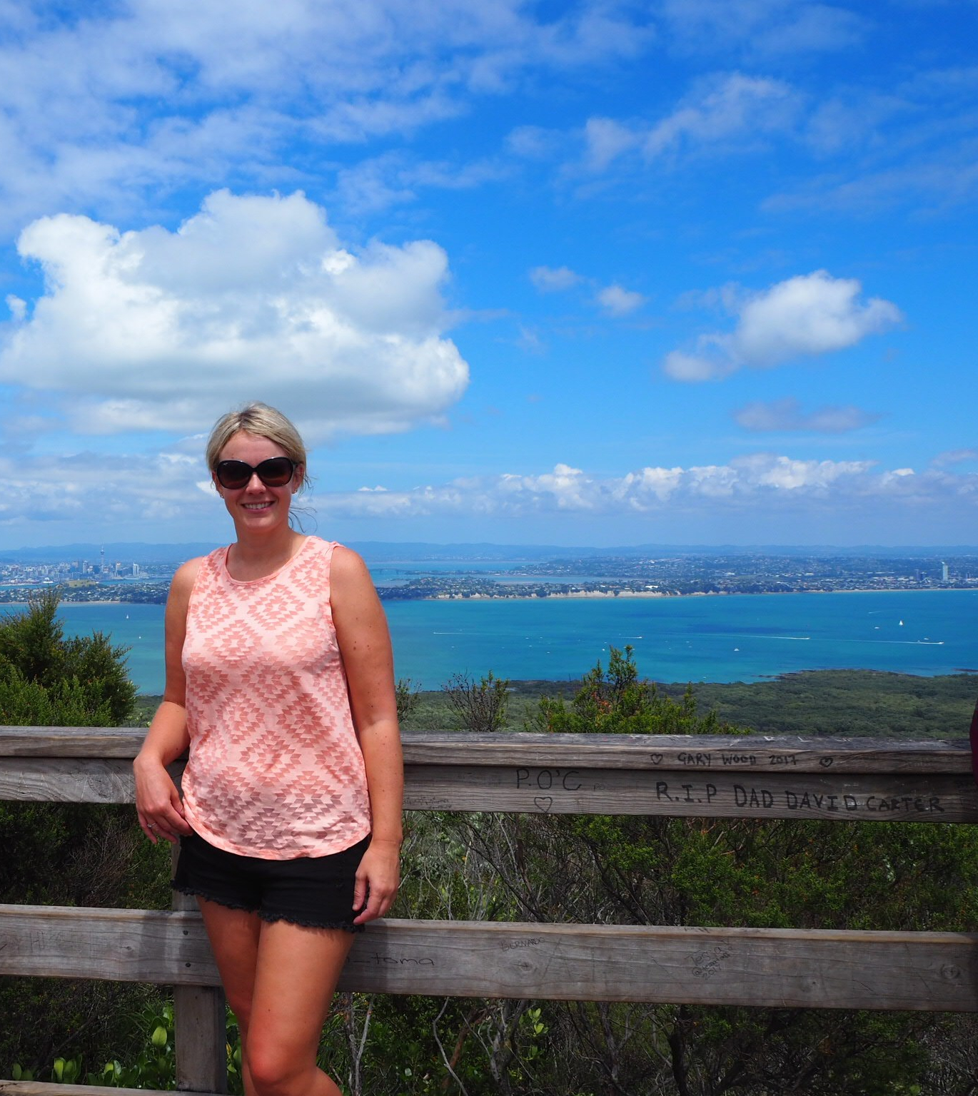 Rangitoto Summit