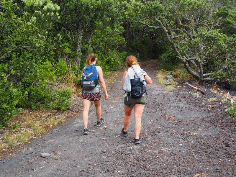 Walking the Rangitoto Summit Track