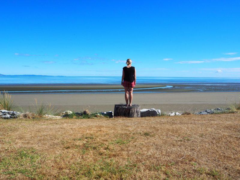 Cabin Pohara Holiday Park, Golden Bay, Abel Tasman