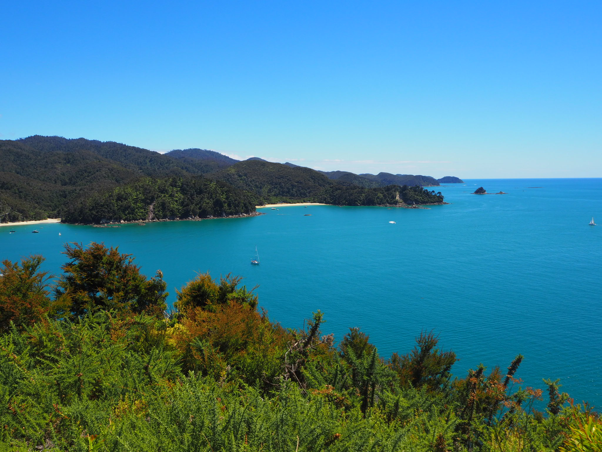 Pitt Head Loop Track, Abel Tasman National Park