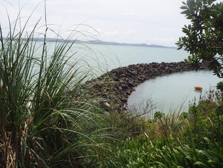 Maraetai Coastal Walk, Auckland
