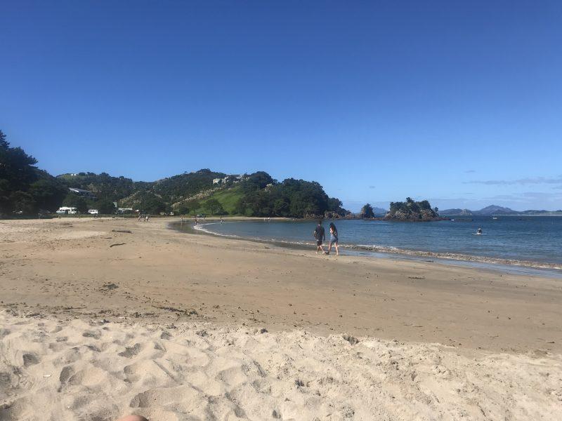 Sandy Bay Beach, Tutukaka