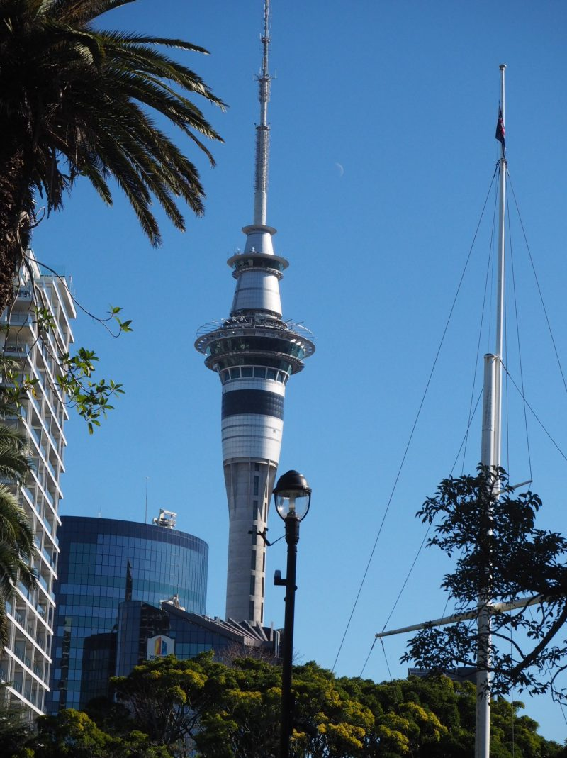 Three Little Wishes Photography, Auckland