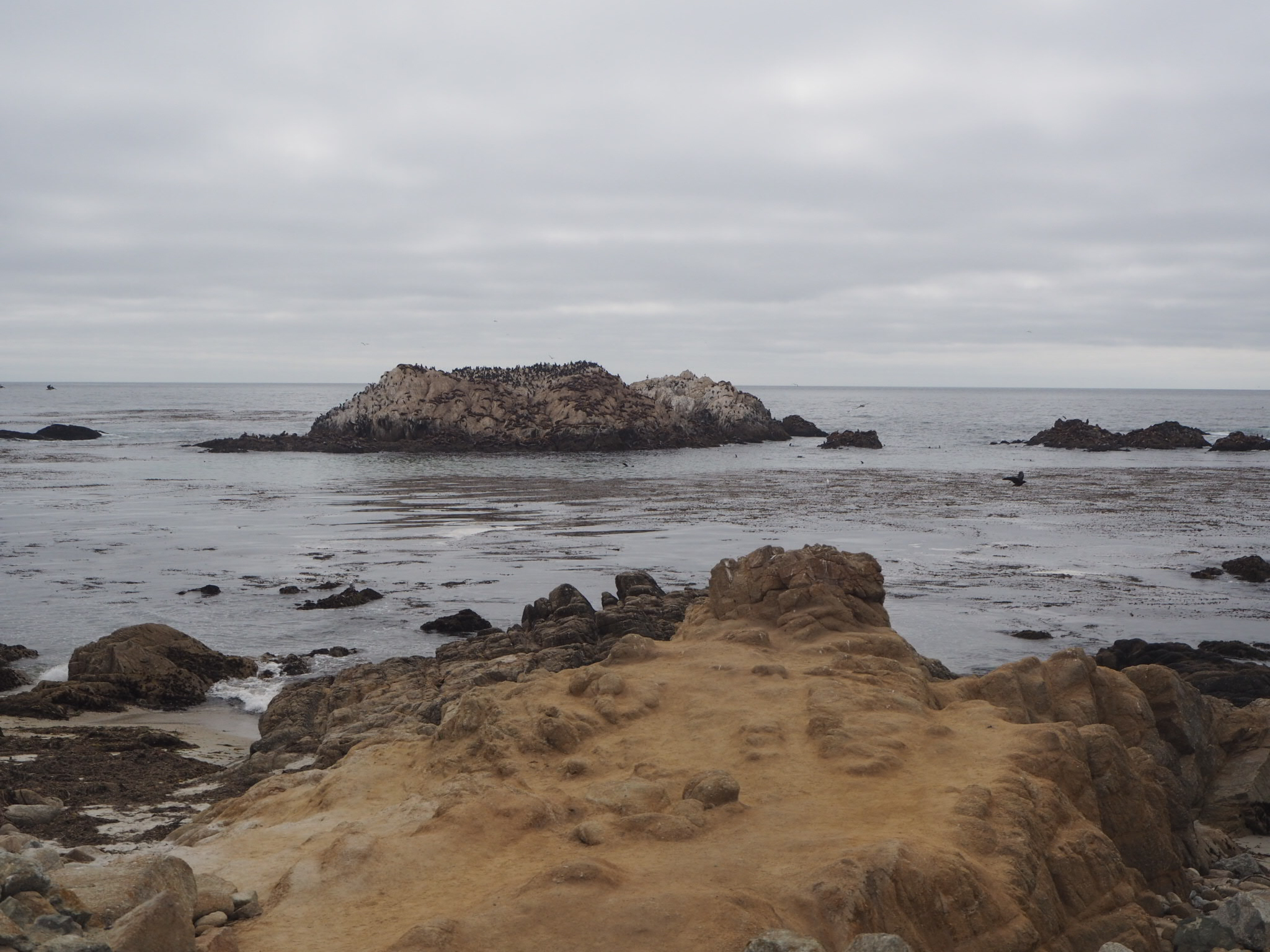 17 mile drive, Pacific Coast Highway, California