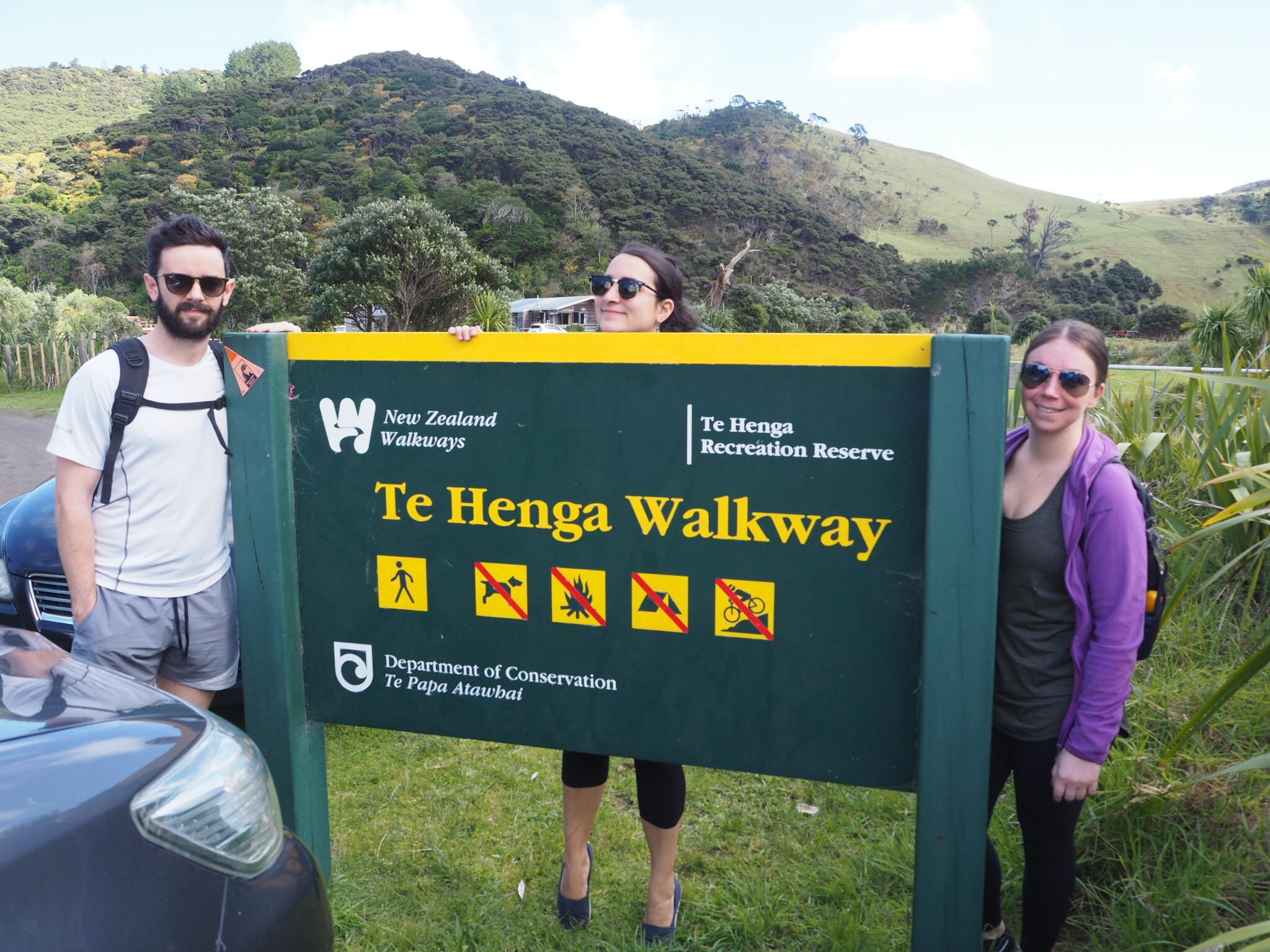 Te Henga Walkway, Auckland